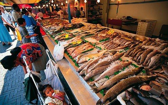 24208_fullimage_haagse_markt_fish_560x350.jpg